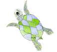 Tortue marine caouanne adulte - couleur 16026
