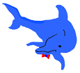 Dauphin commun adulte - couleur 16024