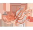 Pieuvre adulte - couleur 41